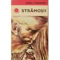 Stramosii - Radu Theodoru