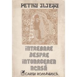 Intrebare despre intoarcerea acasa - Petru Iliesu
