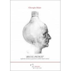 Becul Peticit. Explorări teoretice și practice în artele vizual-cinetice (conține CD)