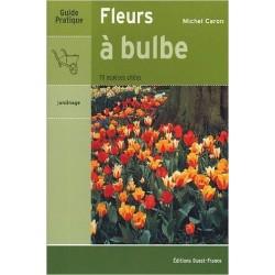 Fleurs à bulbe - Michael Caron