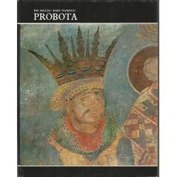 Album Probota - Ion Miclea, Radu Florescu