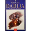 In cautarea identitatii - Nicolae Dabija